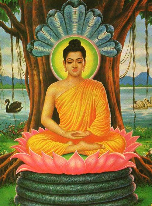 Buddha Muchalinda