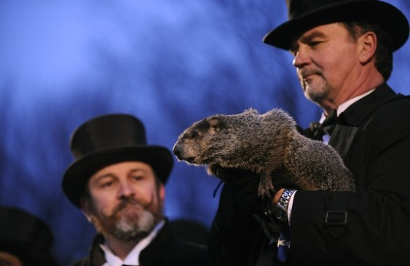 Punxsutawney+Phil+Makes+Appearance+Groundhog+a6SXixtzt0kl