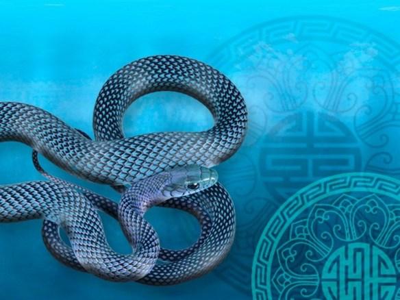 year_water_snake