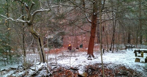 Burn Barrel in the Snow across the Stream (1)