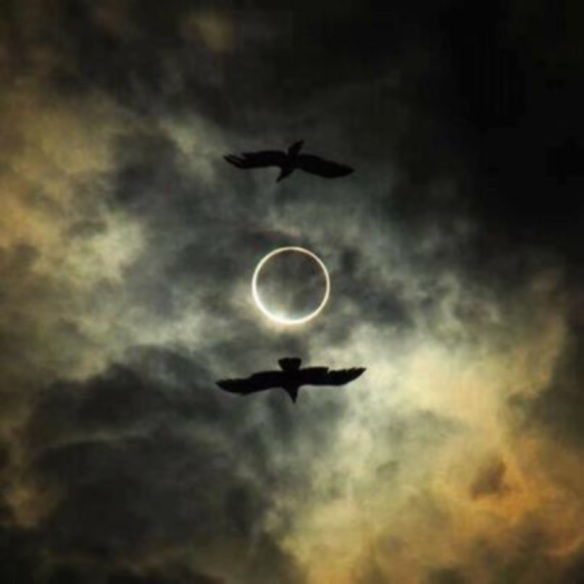 Eclipse Ravens