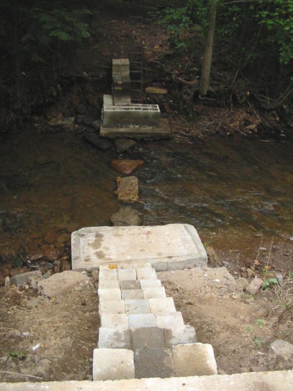 streamsteps2